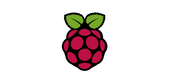 Operating System Rasperry Pi Logo